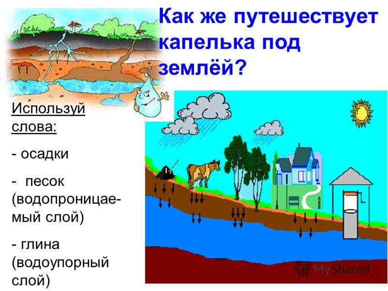Используй слова: - осадки - песок (водопроницае- мый слой) - глина (водоупорный слой) Как же путешествует капелька под землёй?