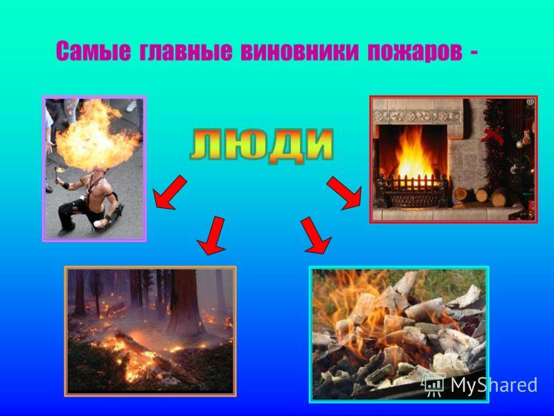 Самые главные виновники пожаров -