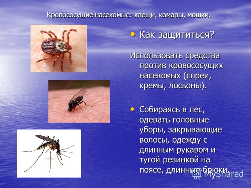 Кровососущие насекомые: клещи, комары, мошки. Кровососущие насекомые: клещи, комары, мошки. Как защититься? Как защититься? Использовать средства против кровососущих насекомых (спреи, кремы, лосьоны). Собираясь в лес, одевать головные уборы, закрываю