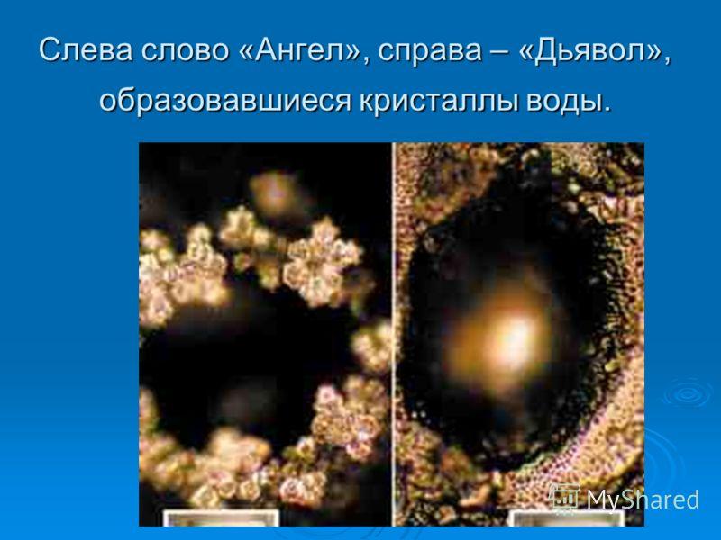 Слева слово «Ангел», справа – «Дьявол», образовавшиеся кристаллы воды.