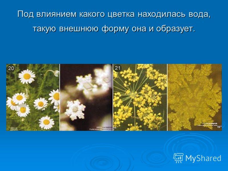 Под влиянием какого цветка находилась вода, такую внешнюю форму она и образует.