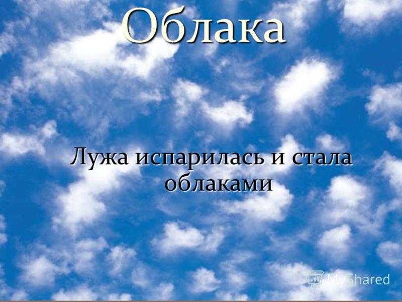 Облака Лужа испарилась и стала облаками
