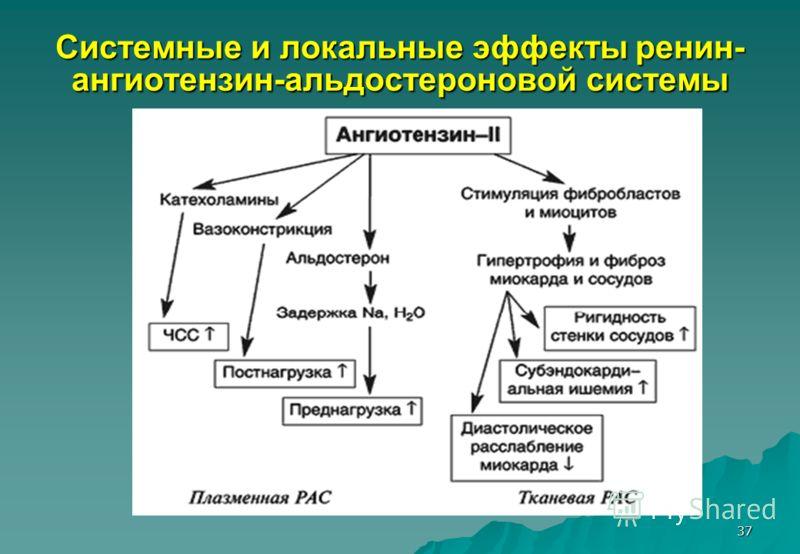 37 Системные и локальные эффекты ренин- ангиотензин-альдостероновой системы