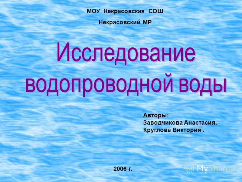 Авторы: Заводчикова Анастасия, Круглова Виктория. 2006 г. МОУ Некрасовская СОШ Некрасовский МР
