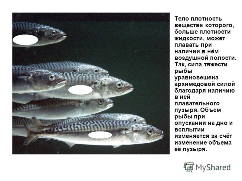 Тело плотность вещества которого, больше плотности жидкости, может плавать при наличии в нём воздушной полости. Так, сила тяжести рыбы уравновешена архимедовой силой благодаря наличию в ней плавательного пузыря. Объем рыбы при опускании на дно и вспл