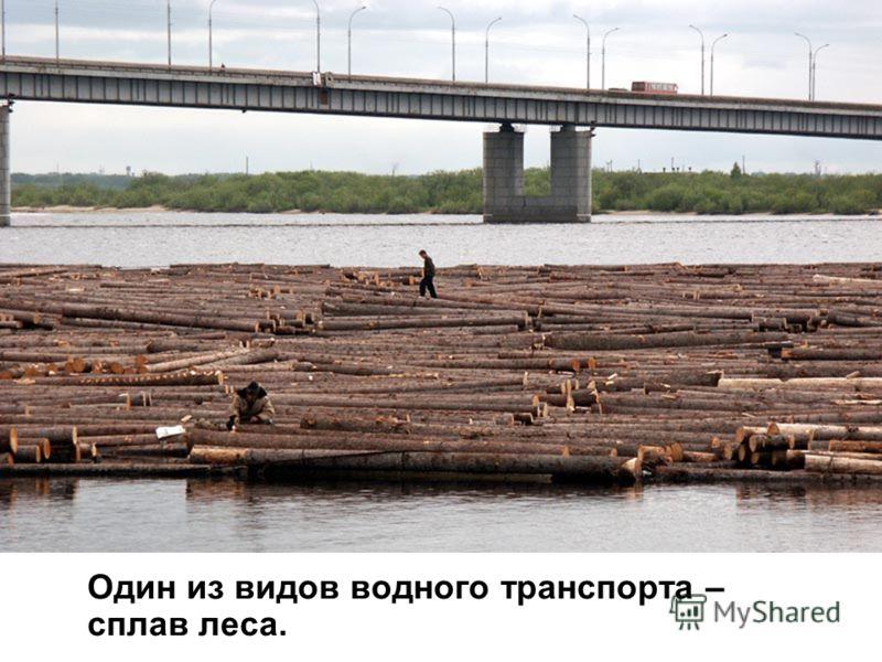 Один из видов водного транспорта – сплав леса.