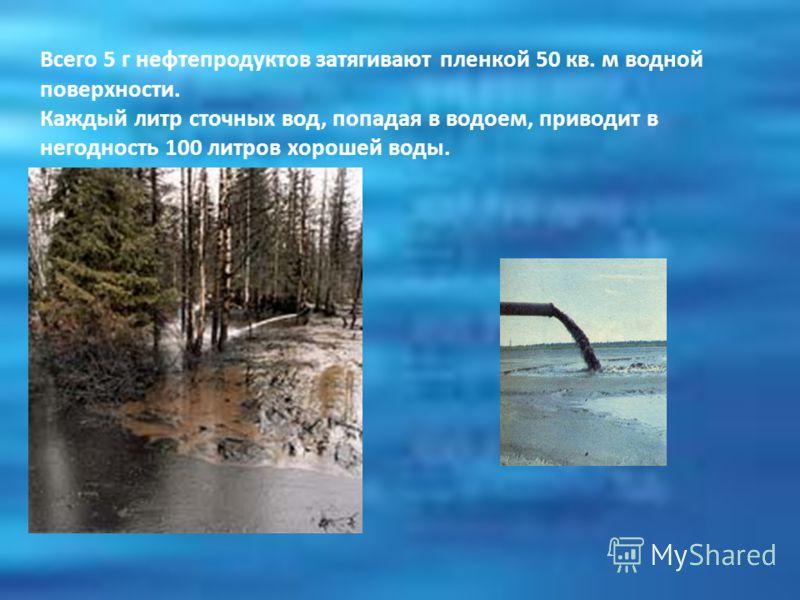 Всего 5 г нефтепродуктов затягивают пленкой 50 кв. м водной поверхности. Каждый литр сточных вод, попадая в водоем, приводит в негодность 100 литров хорошей воды.