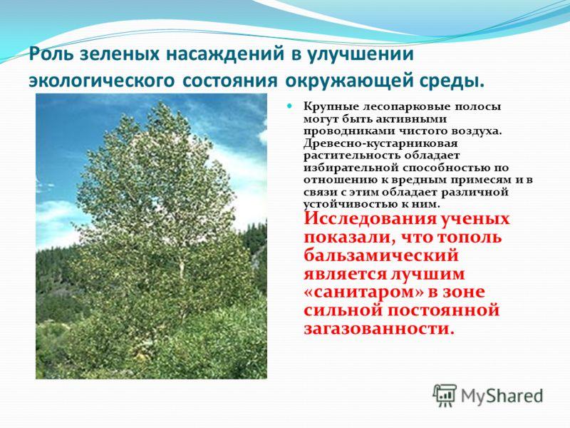 Роль зеленых насаждений в улучшении экологического состояния окружающей среды. Крупные лесопарковые полосы могут быть активными проводниками чистого воздуха. Древесно-кустарниковая растительность обладает избирательной способностью по отношению к вре