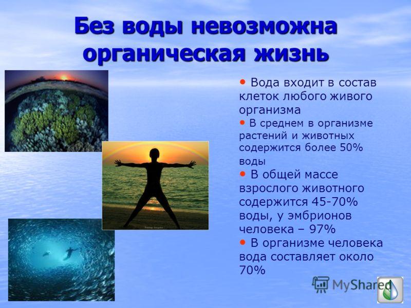 Без воды невозможна органическая жизнь Вода входит в состав клеток любого живого организма В среднем в организме растений и животных содержится более 50% воды В общей массе взрослого животного содержится 45-70% воды, у эмбрионов человека – 97% В орга