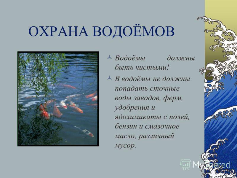 Презентация на тему Вода в природе Урок Природоведения в  11 ОХРАНА