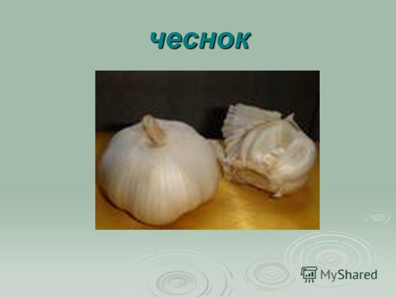 чеснок