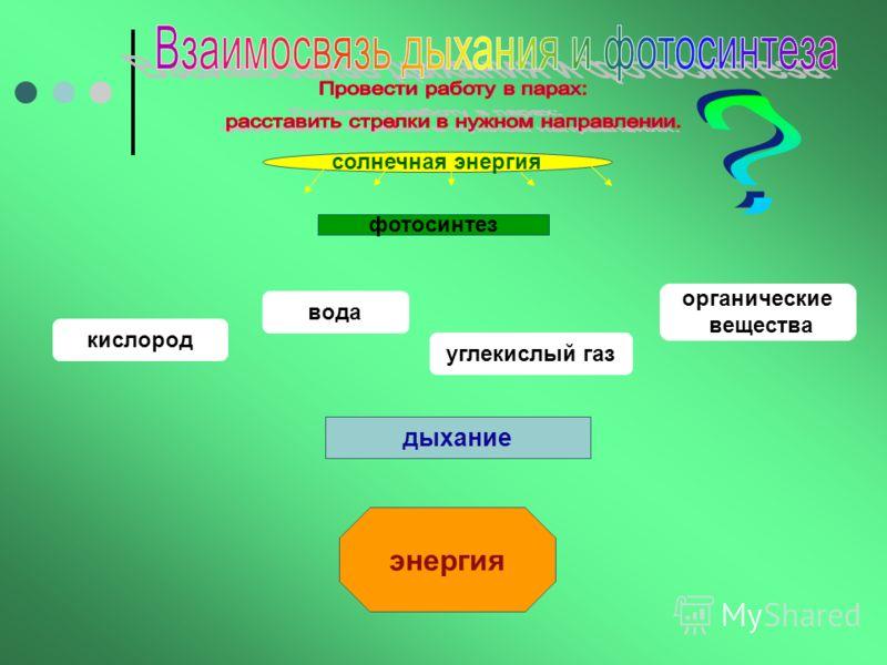 III этап-закрепление знаний