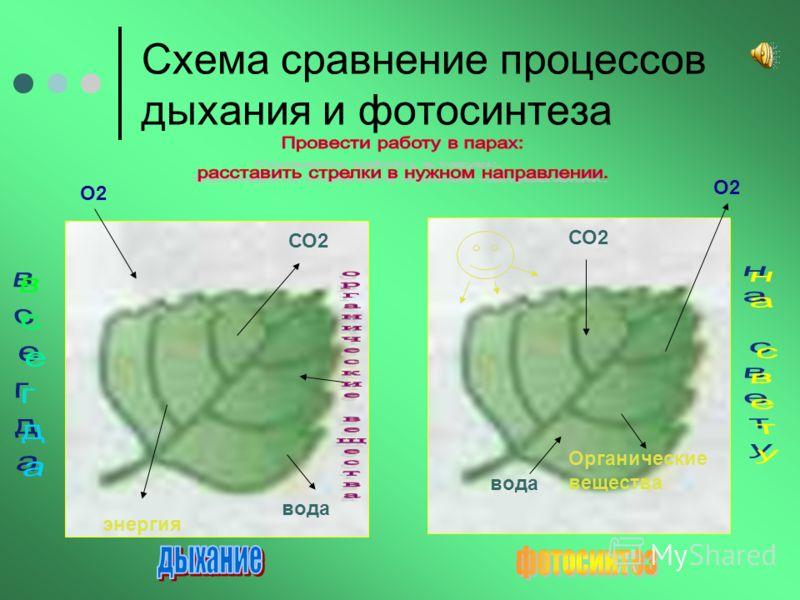 Схема сравнение процессов