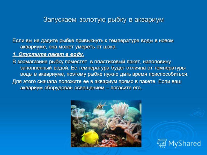 Запускаем золотую рыбку в аквариум Если вы не дадите рыбке привыкнуть к температуре воды в новом аквариуме, она может умереть от шока. 1. Опустите пакет в воду. В зоомагазине рыбку поместят в пластиковый пакет, наполовину заполненный водой. Ее темпер