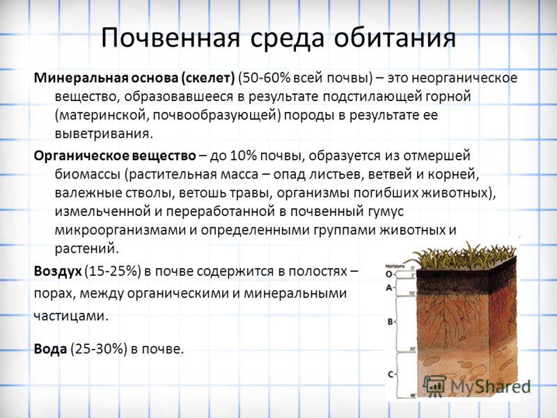 Почвенная среда обитания Минеральная основа (скелет) (50-60% всей почвы) – это неорганическое вещество, образовавшееся в результате подстилающей горной (материнской, почвообразующей) породы в результате ее выветривания. Органическое вещество – до 10%