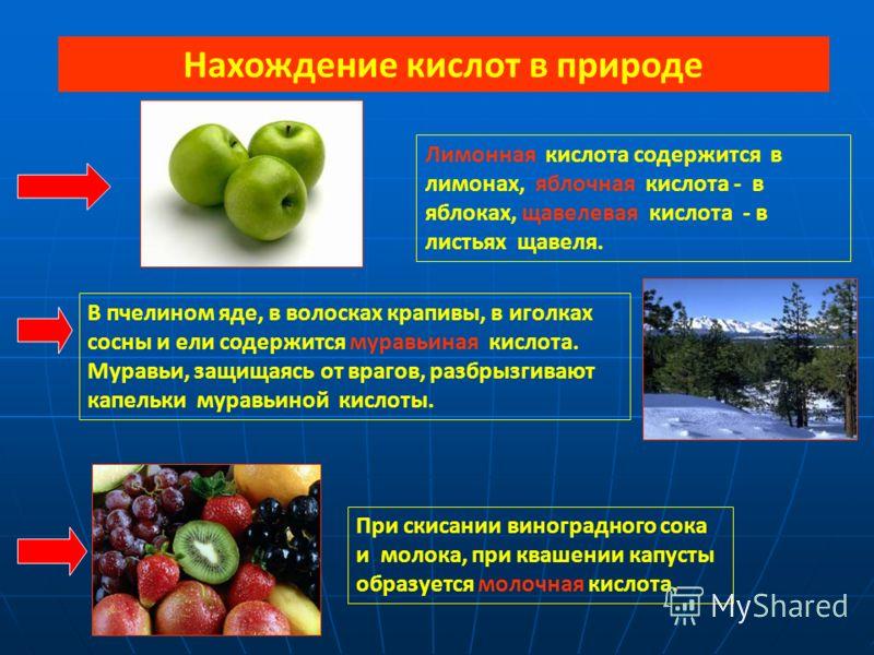 Нахождение кислот в природе Лимонная кислота содержится в лимонах, яблочная кислота - в яблоках, щавелевая кислота - в листьях щавеля. В пчелином яде, в волосках крапивы, в иголках сосны и ели содержится муравьиная кислота. Муравьи, защищаясь от враг