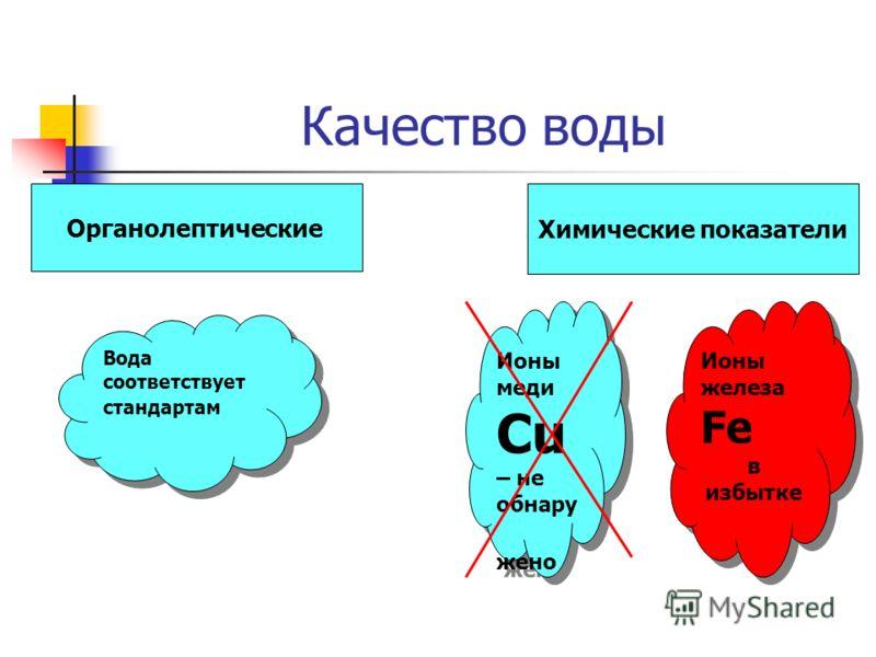 Качество воды Органолептические Химические показатели Вода соответствует стандартам Ионы железа Fe в избытке Ионы железа Fe в избытке Ионы меди Cu – не обнару жено Ионы меди Cu – не обнару жено