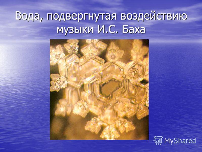 Вода, подвергнутая воздействию музыки И.С. Баха