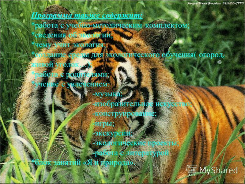 Программа также содержит: *работа с учебно-методическим комплектом; *сведения об экологии; *чему учит экология; *создание среды для экологического обучения( огород, живой уголок…); *работа с родителями; *учение с увлечением: -музыка; -изобразительное