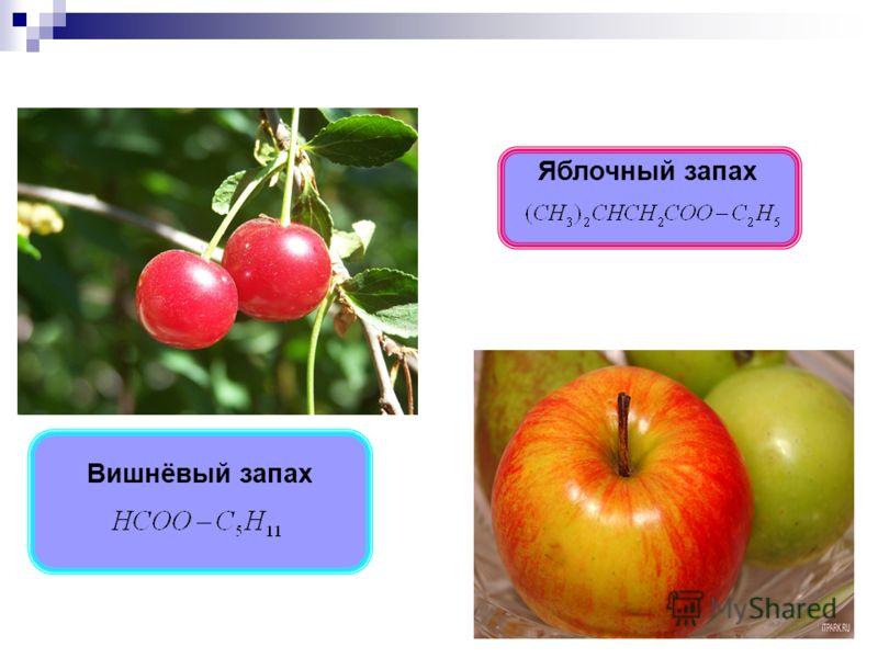 Вишнёвый запах Яблочный запах