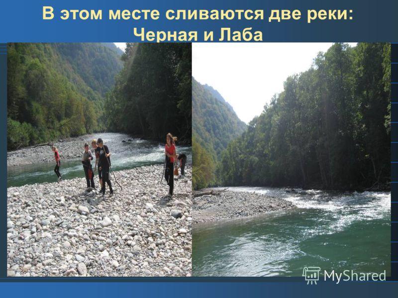 В этом месте сливаются две реки: Черная и Лаба