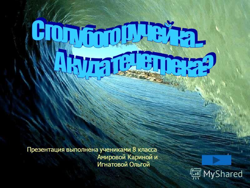 Презентация выполнена учениками 8 класса Амировой Кариной и Игнатовой Ольгой