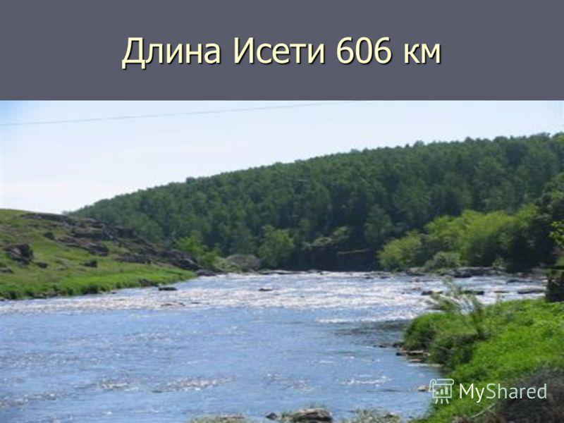 Длина Исети 606 км