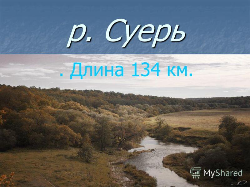 р. Суерь. Длина 134 км.