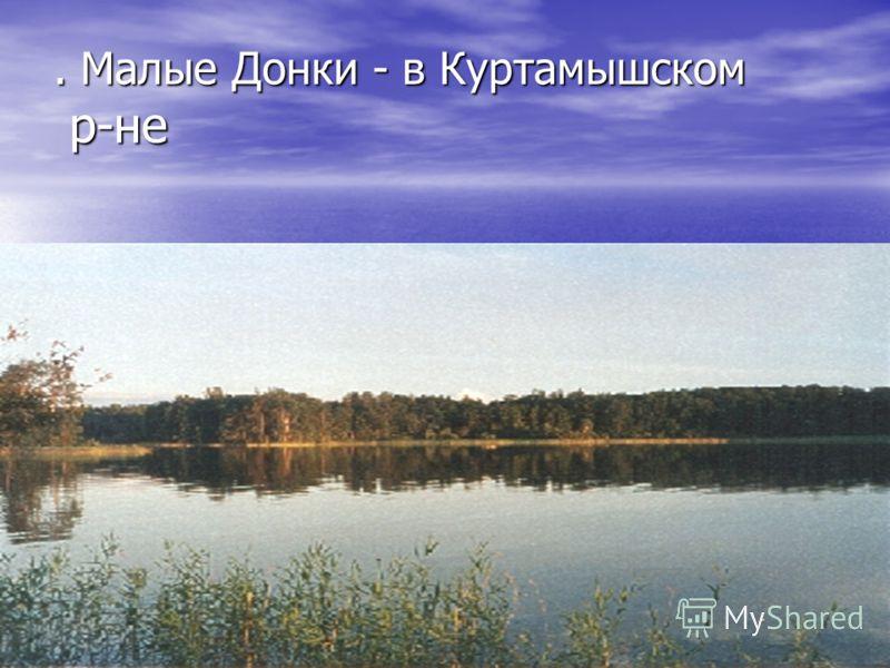 . Малые Донки - в Куртамышском р-не