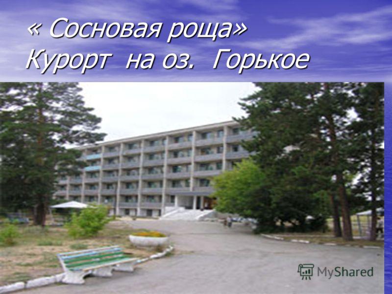 « Сосновая роща» Курорт на оз. Горькое