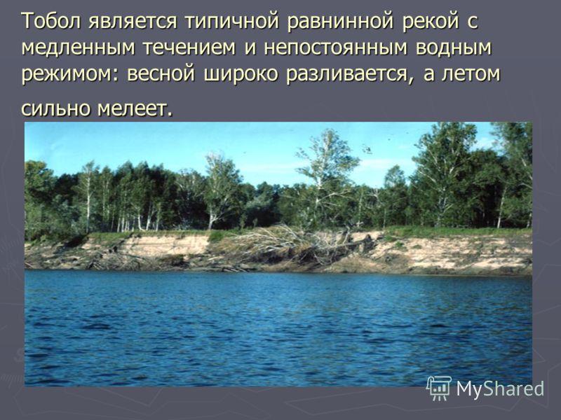 Тобол является типичной равнинной рекой с медленным течением и непостоянным водным режимом: весной широко разливается, а летом сильно мелеет.