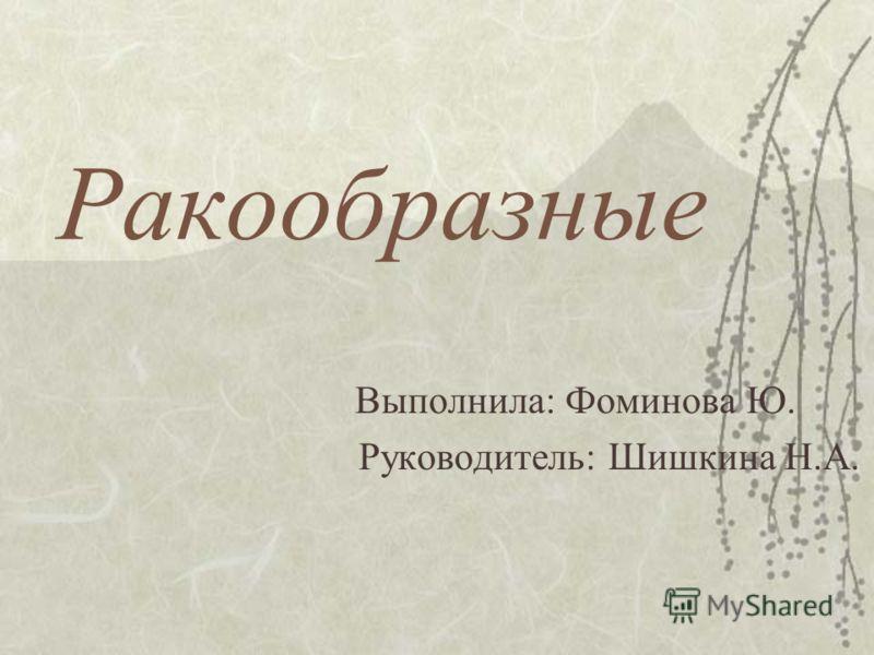 Ракообразные Выполнила: Фоминова Ю. Руководитель: Шишкина Н.А.