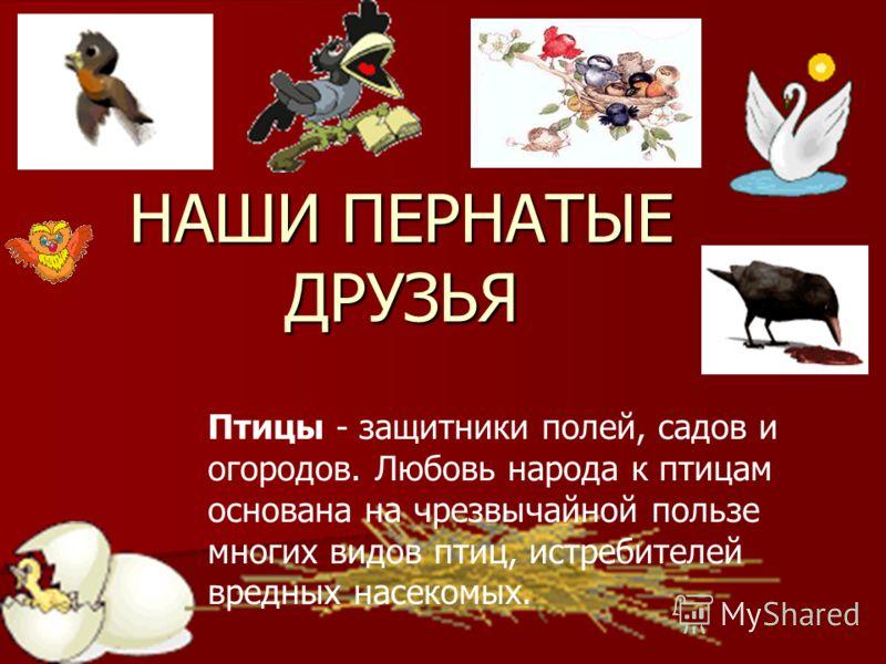 НАШИ ПЕРНАТЫЕ ДРУЗЬЯ Птицы - защитники полей, садов и огородов. Любовь народа к птицам основана на чрезвычайной пользе многих видов птиц, истребителей вредных насекомых.