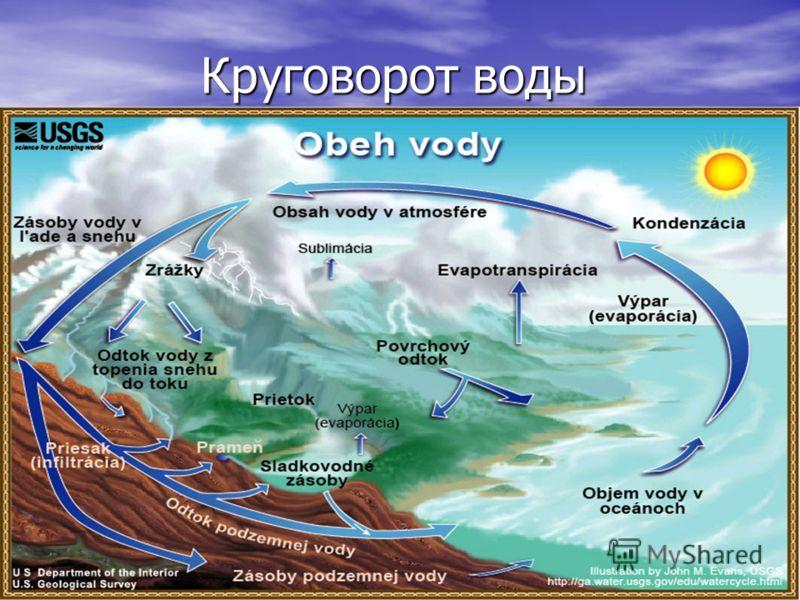 Где вода находится? Вода может быть найдена в нескольких местах Вода может быть найдена в нескольких местах Океаны Озера Пруды Реки
