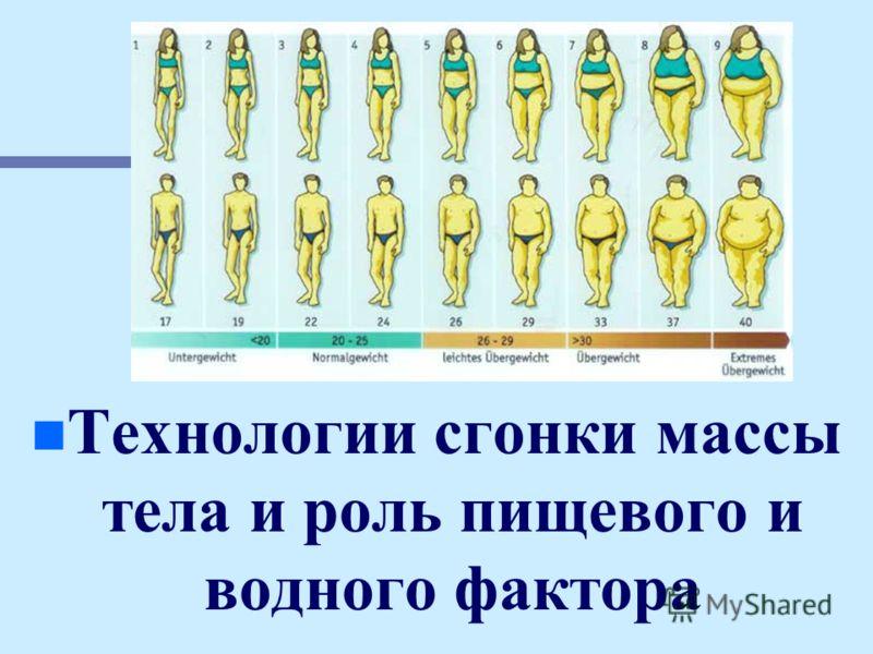 n n Технологии сгонки массы тела и роль пищевого и водного фактора