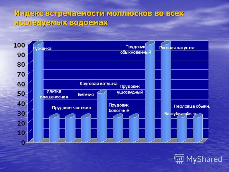 Индекс встречаемости моллюсков во всех исследуемых водоемах