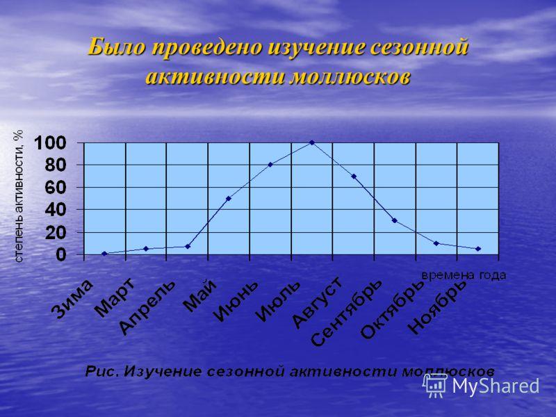 Было проведено изучение сезонной активности моллюсков