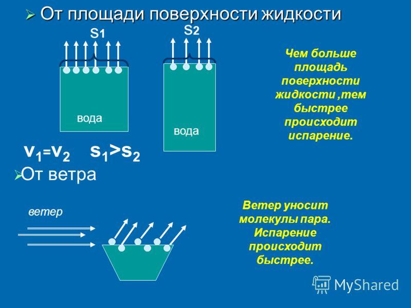От площади поверхности жидкости От площади поверхности жидкости вода v1=v2v1=v2 Чем больше площадь поверхности жидкости,тем быстрее происходит испарен