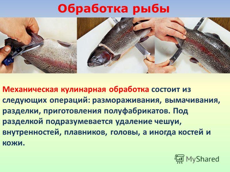 Обработка рыбы Механическая кулинарная обработка состоит из следующих операций: размораживания, вымачивания, разделки, приготовления полуфабрикатов. Под разделкой подразумевается удаление чешуи, внутренностей, плавников, головы, а иногда костей и кож