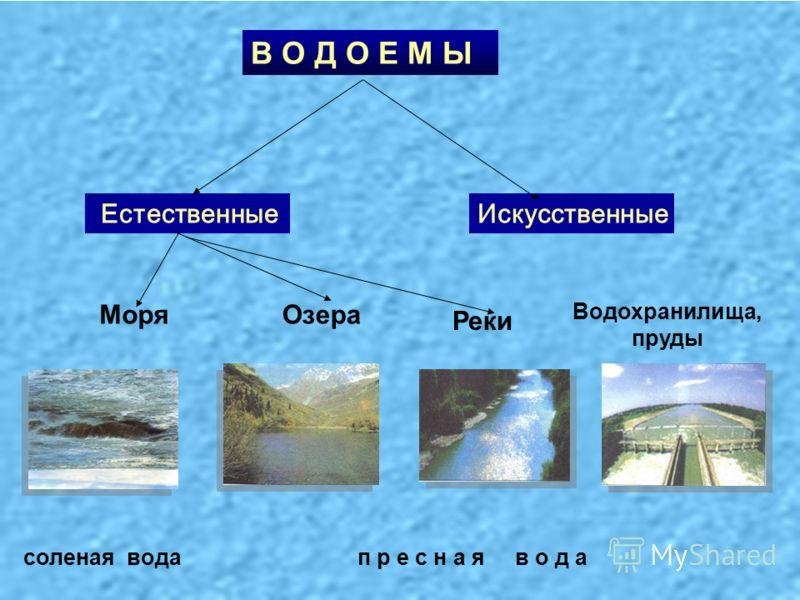 В О Д О Е М Ы Искусственные Естественные п р е с н а я в о д асоленая вода МоряОзера Реки Водохранилища, пруды