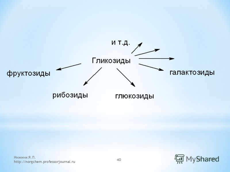 29.07.2012 Нижник Я.П. http://norgchem.professorjournal.ru 40
