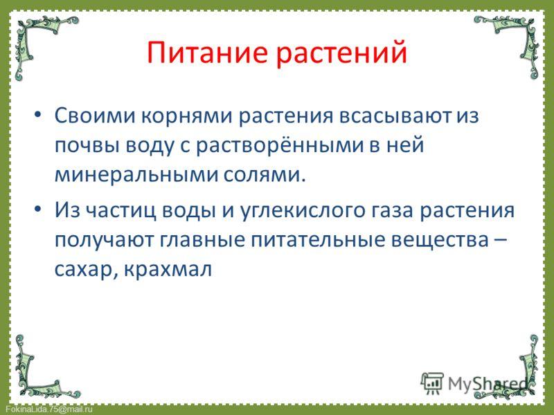 FokinaLida.75@mail.ru Своими корнями растения всасывают из почвы воду с растворёнными в ней минеральными солями. Из частиц воды и углекислого газа растения получают главные питательные вещества – сахар, крахмал Питание растений