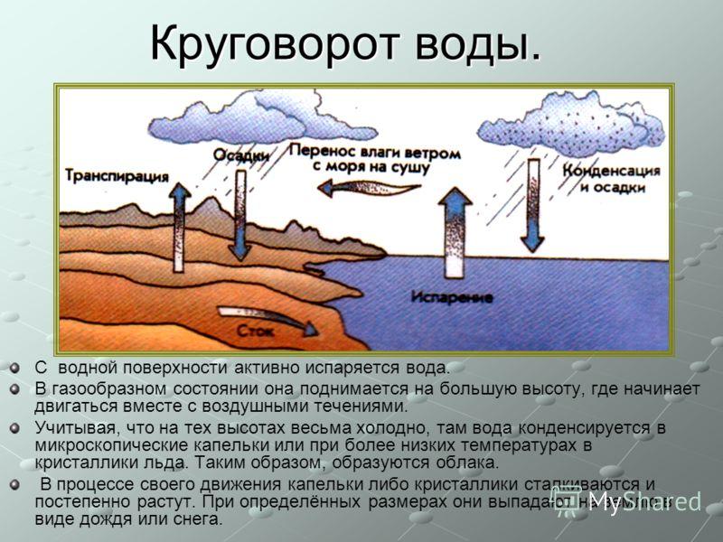 Круговорот воды. С водной поверхности активно испаряется вода. В газообразном состоянии она поднимается на большую высоту, где начинает двигаться вместе с воздушными течениями. Учитывая, что на тех высотах весьма холодно, там вода конденсируется в ми