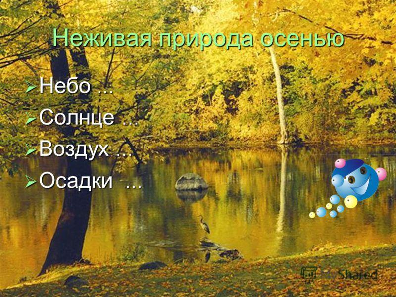Живая природа летом Растения … Растения … Звери … Звери … Птицы … Птицы … Насекомые … Насекомые …