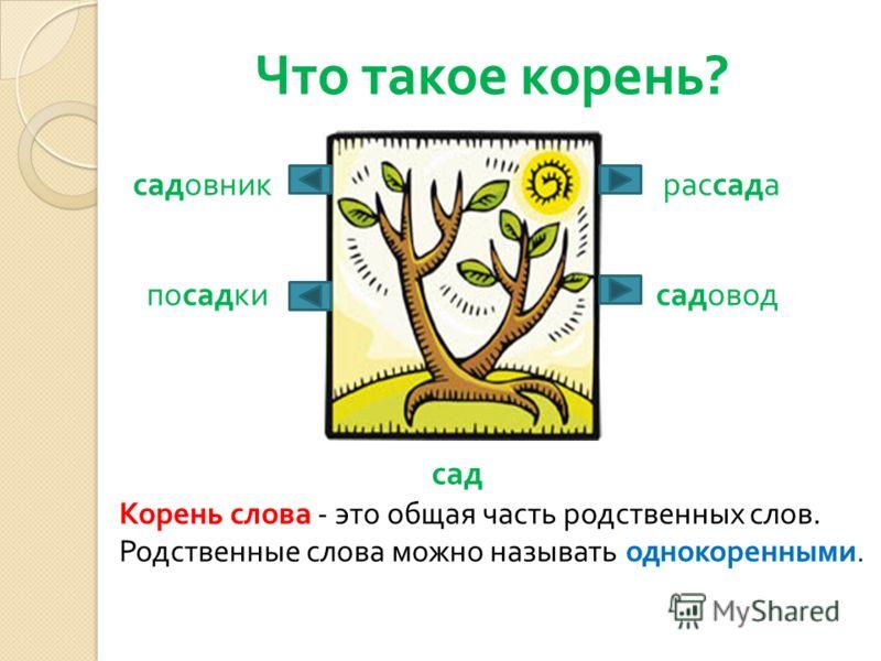 Что такое корень ? сад садовод садовникрассада посадки Корень слова - это общая часть родственных слов. Родственные слова можно называть однокоренными.