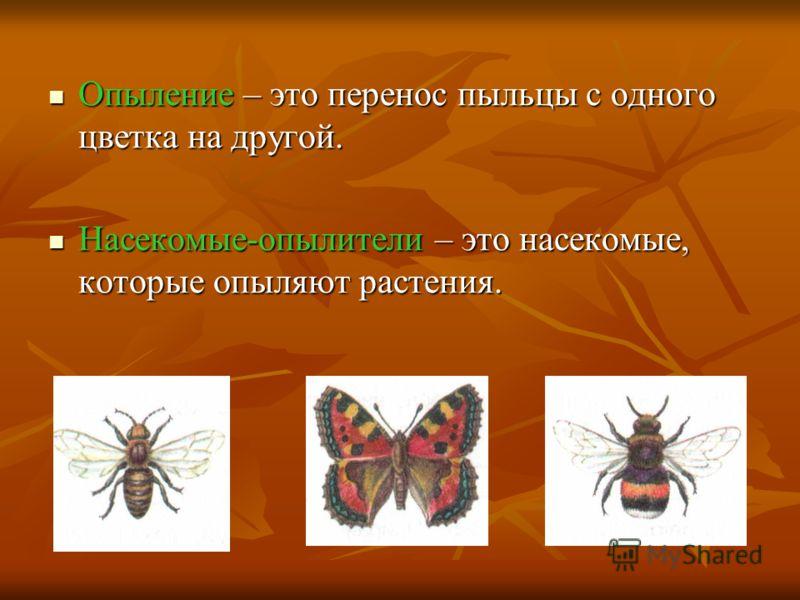 Опыление – это перенос пыльцы с одного цветка на другой. Опыление – это перенос пыльцы с одного цветка на другой. Насекомые-опылители – это насекомые, которые опыляют растения. Насекомые-опылители – это насекомые, которые опыляют растения.