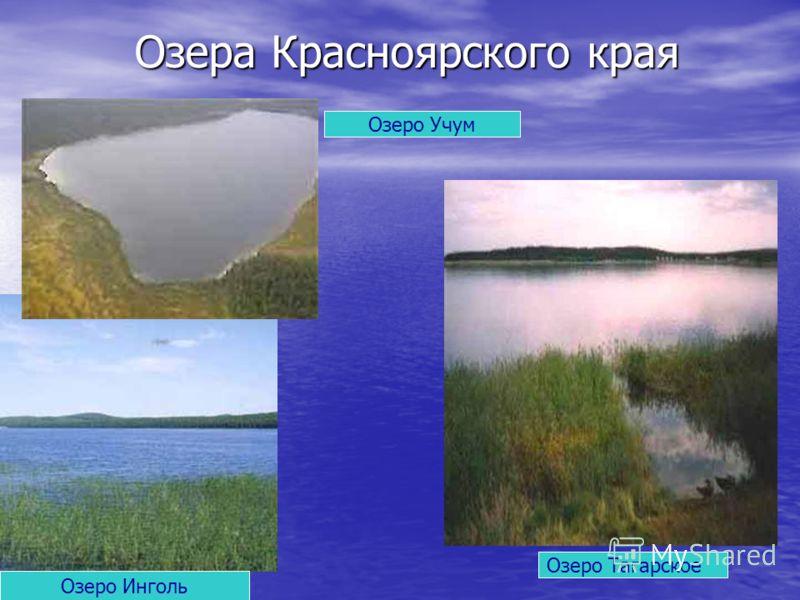 Озера Красноярского края Озеро Тагарское Озеро Инголь Озеро Учум