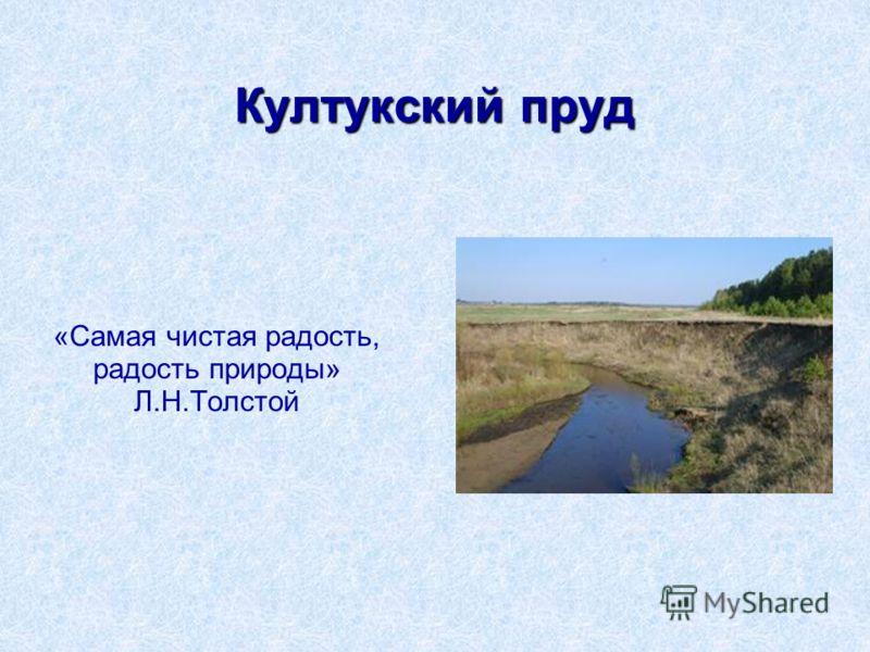 Култукский пруд «Самая чистая радость, радость природы» Л.Н.Толстой