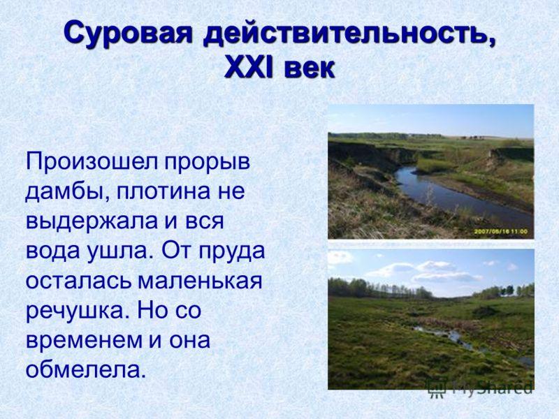 Произошел прорыв дамбы, плотина не выдержала и вся вода ушла. От пруда осталась маленькая речушка. Но со временем и она обмелела.