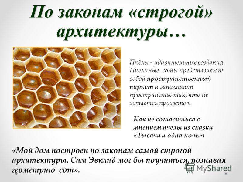 По законам «строгой» архитектуры… Пчёлы - удивительные создания. Пчелиные соты представляют собой пространственный паркет и заполняют пространство так, что не остается просветов. Как не согласиться с мнением пчелы из сказки «Тысяча и одна ночь»: «Мой